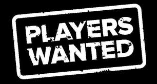 McKinnon Netball Club is looking for players!